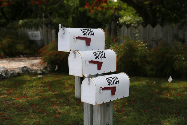 Three mailboxes are seen along the highway US-1 in the Lower Keys near Key Largo in Florida, July 10, 2014. (Photo by Wolfgang Rattay/Reuters)