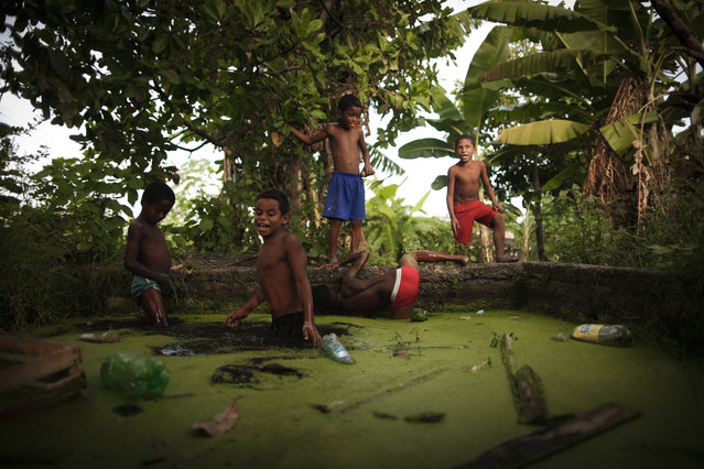 Children living in the Pantanal Favela hunt frogs in polluted waters to help their families, without fear of the danger of pollution in Rio de Janerio, Brazil on November 10, 2017. (Photo by Fabio Teixeira/Anadolu Agency/Getty Images)