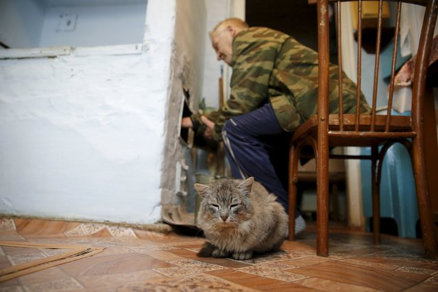 Local resident Alexander removes ash from a stove as a cat sits nearby in his house in Sankin in Sverdlovsk region, Russia October 16, 2015. (Photo by Maxim Zmeyev/Reuters)