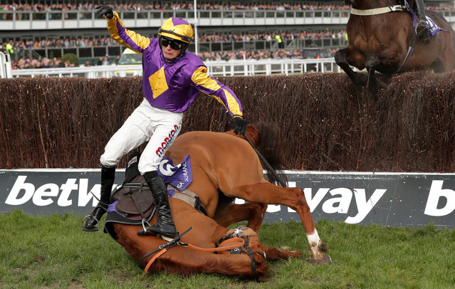 Copperhead ridden by Harry Cobden falls during the RSA Insurance Novices' Chase (Grade 1) at Cheltenham Racecourse on March 11, 2020 in Cheltenham, England. (Photo by Tom Jenkins/The Guardian)