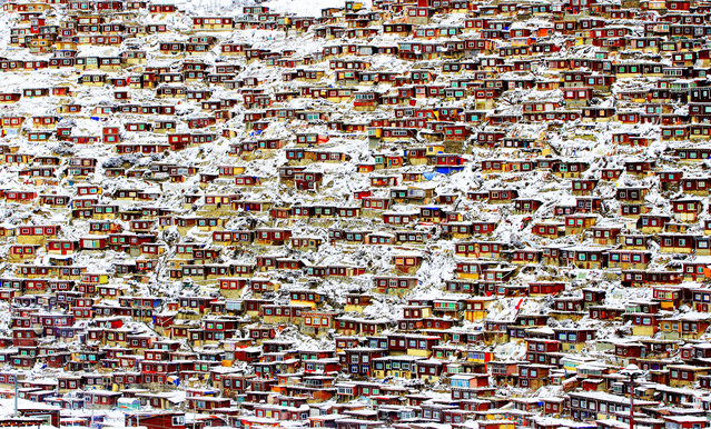 """""""Larung Gar Buddhist Academy, China"""". Red houses of the lamas and nuns at this Buddhist academy in Sichuan province, China, after heavy snowfall. Honourable mention: Architecture. (Photo by Qingjun Rong/SIPA Contest)"""