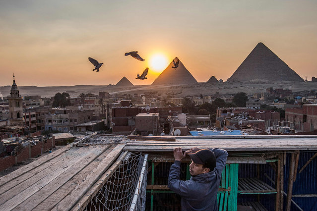 Omar Gamal, a 28-year-old pigeon keeper, stands next to his pigeon coop on his rooftop in the Egyptian capital's twin city of Giza on February 21, 2021, with the Pyramids of (R to L) Khufu (Cheops), Khafre (Chephren), and Menkaure (Menkheres) in the background. An ancient tradition handed down through the generations, the practice of domesticating pigeons stretches across borders from the banks of the Nile to north Africa and beyond, with people not only training birds for competitions, but also serving them up as a dining delicacy. (Photo by Khaled Desouki/AFP Photo)