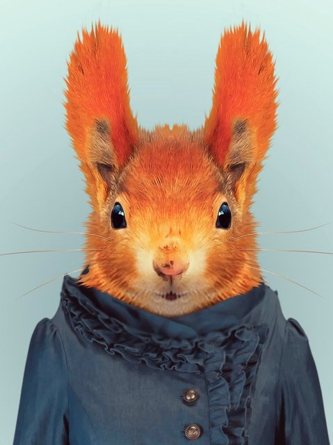 Red squirrel wearing a dress. (Photo by Yago Partal/Barcroft Media)