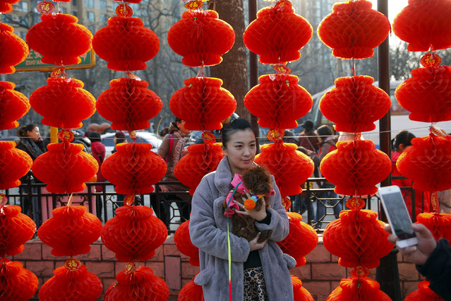 A woman holds a dog while having her picture taken at the Longtan park as the Chinese Lunar New Year, which welcomes the Year of the Monkey, is celebrated in Beijing February 9, 2016. (Photo by Damir Sagolj/Reuters)