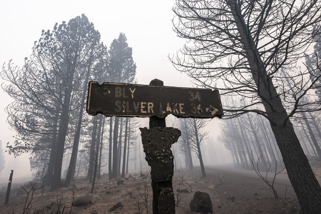 A sign damaged by the Bootleg Fire stands among the haze on Thursday, July 22, 2021, near Paisley, Ore. (Photo by Nathan Howard/AP Photo)