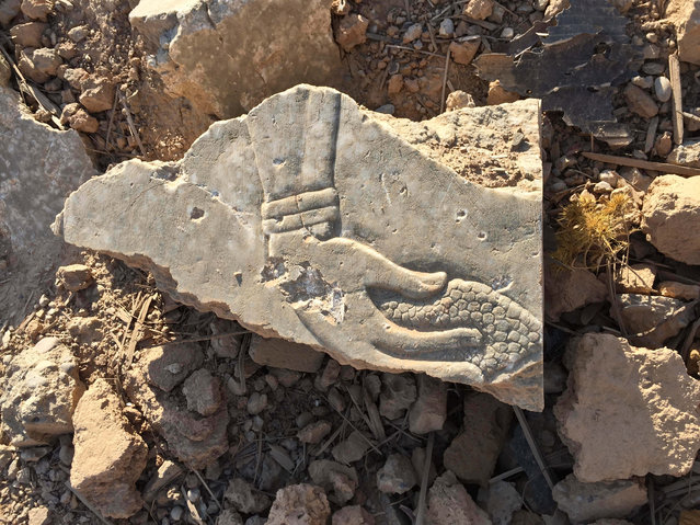 A fragment of an Assyrian-era relief shows the image of a genie holding a pine cone at the ancient site of Nimrud that was destroyed by Islamic State group militants near Mosul, Iraq. in this November 28, 2016 photo. In the 9th and 8th centuries BC, Nimrud was the capital of the Assyrian Empire, which burst out of Northern Mesopotamia to conquer much of the Mideast. The remains of its palaces, reliefs and temples were methodically blown up and torn to pieces by the Islamic State group in early 2015 in its campaign to erase history. (Photo by Maya Alleruzzo/AP Photo)