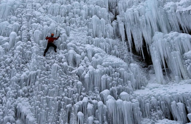 A man climbs an artificial wall of ice in the city of Liberec, Czech Republic, January 12, 2017. (Photo by David W. Cerny/Reuters)