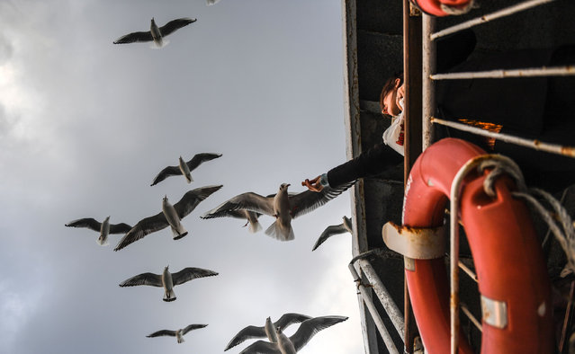A woman feeds seagulls as she travel on a ferry from the European to the Anatolian side of Istanbul on February 4, 2017. (Photo by Bulent Kilic/AFP Photo)