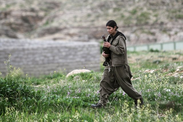 A female Kurdistan Workers Party (PKK) fighter holds a turkey which had escaped at a base in the Sinjar mountains, March 12, 2015. (Photo by Asmaa Waguih/Reuters)