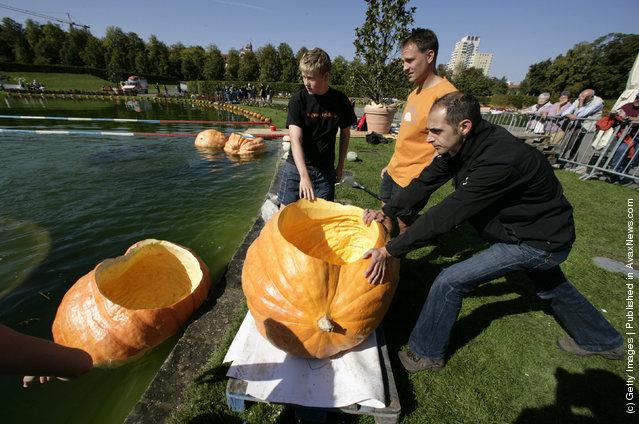 Giant pumpkin race