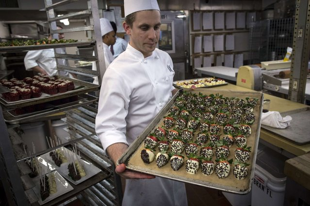 Pastry Sous Chef Michael Ottomanelli holds chocolate-dipped strawberries covered in larvae in the kitchen before the 110th Explorers Club Annual Dinner at the Waldorf Astoria in New York March 15, 2014. (Photo by Andrew Kelly/Reuters)
