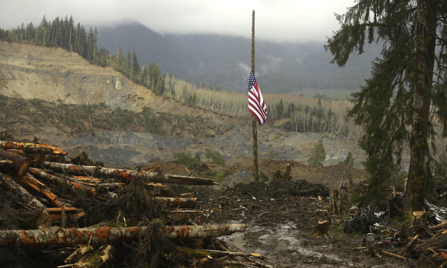 A flag flies at half-staff on a log with the slope of the massive mudslide that struck Oso in the background near Darrington, Washington March 30, 2014. The official death toll from the March 22 catastrophe northeast of Seattle stood at 18, based on the number of victims whose bodies have been recovered and positively identified by medical examiners. But Snohomish County authorities have acknowledged finding 10 more sets of remains that have yet to be identified, putting the overall presumed body count at 28. (Photo by Ted S. Warren/Reuters)
