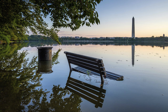 A bench is surrounded by water after recent heavy rains caused the Tidal Basin in Washington to overflow its banks Wednesday, August 22, 2018. (Photo by J. David Ake/AP Photo)