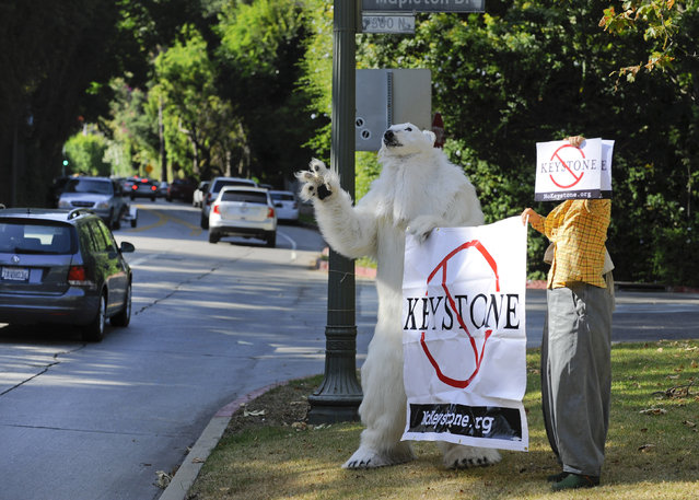 Andrea Weber, wearing a polar bear costume, and Barbie Ishida (R), along with other climate activists, protest against the Keystone XL Canada to Texas pipeline project at Bel Air in Los Angeles, California, May 7, 2014. U.S President Barack Obama was in the vicinity to attend a fundraiser at the home of Alan Horn, chairman of the Walt Disney Studios. (Photo by Gus Ruelas/Reuters)