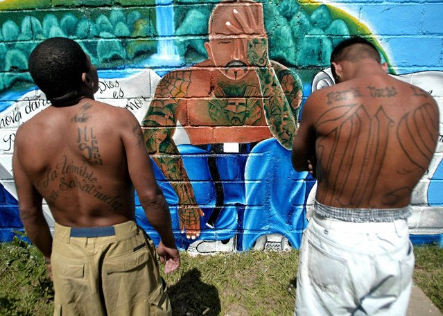 "Two unidentified members of the Mara Salvatrucha ""MS-13"" (juvenile gang) show their tatoos in front of a graffiti with a message that reads ""we ask the Honduran people for forgiveness"", in a unit of the National Penitentiary in Tamara, 30km north of Tegucigalpa, 01 February 2006. (Photo by Elmer Martinez/AFP Photo)"