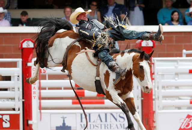 Jake Vold of Airdrie, Alberta, rides the horse Up Ur Alley in the bareback event during the Calgary Stampede rodeo in Calgary, Alberta, Canada July 8, 2016. (Photo by Todd Korol/Reuters)