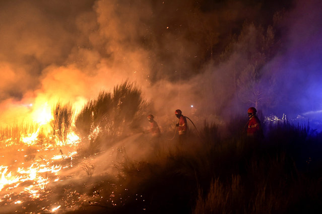 A group of fire fighters hose down a blaze while fighting a forest fire in S. Joao do Monte, Viseu region, Portugal, early 09 August 2016. Numerous fire engine vehicles and hundreds of fire fighters are deployed to fight the widespread fires in the northern regions of Portugal, of which some had already declared a state of emergency. (Photo by Nuno Andre Ferreira/EPA)