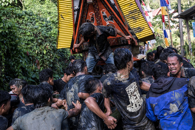 People carry the coffin of Liling Saalino for  burial ritual as a part of Rambu Solo ceremony on August 27, 2016. When a person dies, animals such as pigs, chickens and buffalo are sacrificed as the locals believe the animals carry the soul of the deceased into heaven. The number and type of animal killed reflect the social status of the dead person. (Photo by Agung Parameswara/The Washington Post)