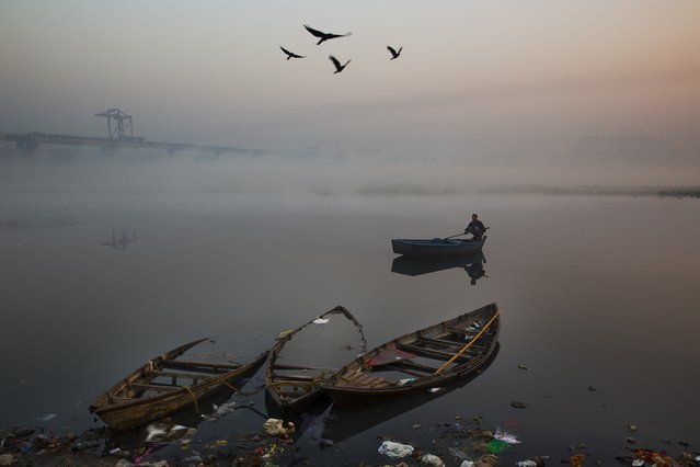 Birds fly past as a man rows his boat in River Yamuna in the morning in New Delhi, India, Tuesday, December 9, 2014. Clogged with garbage, sewage and industrial runoff, the Yamuna, which is one of India's major rivers, is also one of the most polluted. (Photo by Benat Armangue/AP Photo)