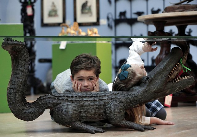 "Children sit under a crocodile based table, as they pose for photographers during a press preview of a themed auction that features the animal as artistic inspiration, entitled ""Creatures Great and Small"", in London, Monday, December 15, 2014. The sale scheduled for December 17, 2014, explores animals across a diverse range of mediums and styles, from intricate carving details in 19th century furniture through to contemporary sculpture, according to Christie's auction house. (Photo by Lefteris Pitarakis/AP Photo)"