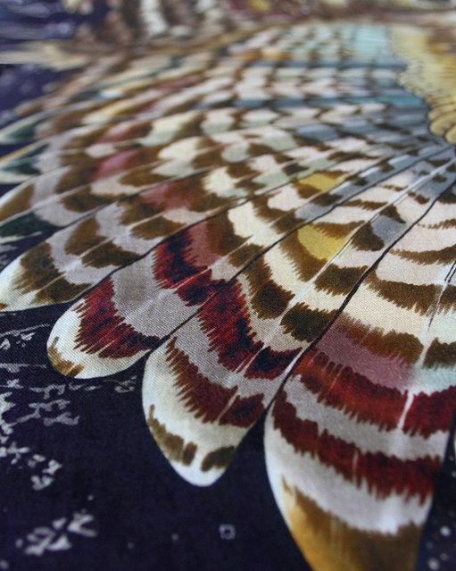 Shovava Wing Scarves By Roza Khamitova
