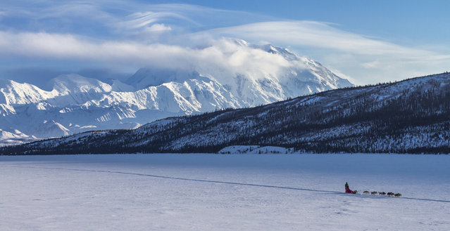 Denali National Park and Preserve in Alaska. (Photo by U.S. Department of the Interior/Cater News)