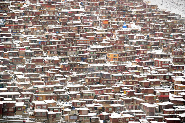 This photo taken on April 5, 2013 shows hundreds of small houses where monks and nuns live at Seda Monastery, the largest Tibetan Buddhist school in the world, with up to 40,000 monks and nuns in residence for some parts of the year. (Photo by Peter Parks/AFP Photo)