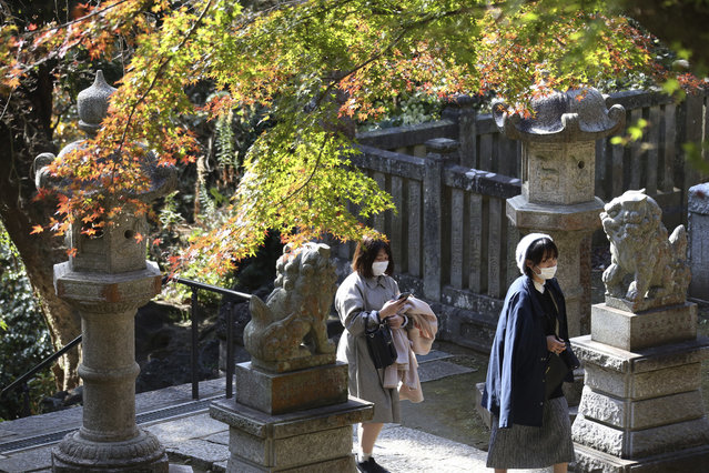 Visitors wearing face masks to protect against the spread of the coronavirus walk through the colorful autumn leaves at the Kenchoji temple in Kamakura, Monday, November 30, 2020. (Photo by Koji Sasahara/AP Photo)