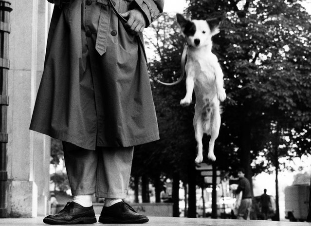 Paris, 1989. (Photo by Elliott Erwitt/Magnum Photos)