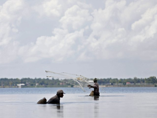 Fishermen catch fish in a lagoon in Batticaloa November 24, 2015. (Photo by Dinuka Liyanawatte/Reuters)