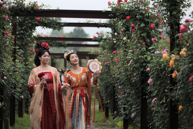 Tourists in traditional costumes visit a rose garden during a rose cultural festival on April 27, 2021 in Huzhou, Zhejiang Province of China. (Photo by VCG/VCG via Getty Images)