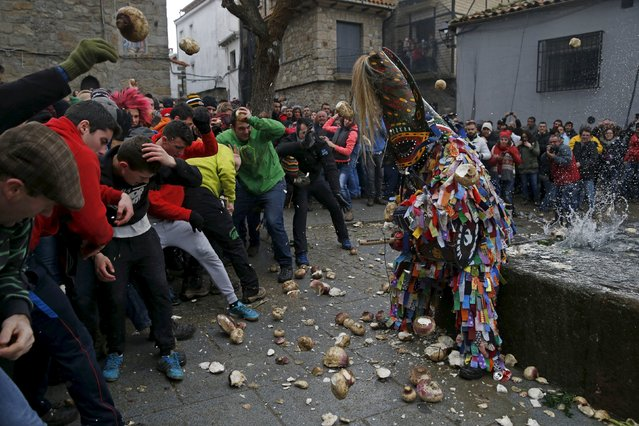 Revellers throw turnips at the Jarramplas, a character who wears a devil-like mask and a colourful costume, as he makes his way through the streets while beating his drum during the Jarramplas traditional festival in Piornal, southwestern Spain, January 20, 2016. Even though the exact origins of the festival are not known, various theories exist linking it to the mythological punishment of Caco by Hercules. (Photo by Susana Vera/Reuters)