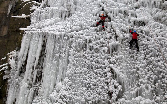 People climb an artificial wall of ice in the city of Liberec, Czech Republic, January 23, 2016. (Photo by David W. Cerny/Reuters)