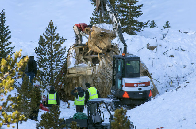 "Thursday morning, November 15, 2018, the Town of Breckenridge employees beheads ""Isak Hearthstone"", a wooden troll built by artist Thomas Dambo, by a chainsaw to remove it entirely from the Wellington Trail, in Breckenridge, Colo. The troll was created during the Breckenridge Festival of the Arts in August, but got so popular that it caused complaints from nearby homeowners due to tourists visiting, and demanded it to be removed. (Photo by Hugh Carey/Summit Daily News via AP Photo)"