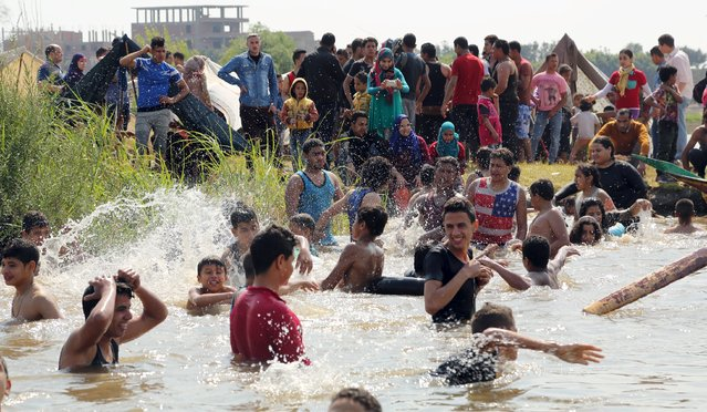 People swim in the river Nile as they celebrate the spring holiday of Sham el Nessim on the outskirts of Cairo, April 13, 2015. (Photo by Asmaa Waguih/Reuters)
