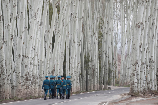 Kyrgyz guards of honour walk away after a welcoming ceremony attended by Presidents Vladimir Putin of Russia and Sooronbay Jeenbekov of Kyrgyzstan in Bishkek, Kyrgyzstan on March 28, 2019. (Photo by Maxim Shemetov/Reuters)