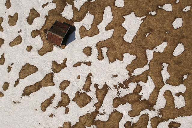 An aerial picture taken with a drone shows a barn between patches of melting snow on a meadow near Gerold, Germany, 02 April 2019. (Photo by Philipp Guelland/EPA/EFE)