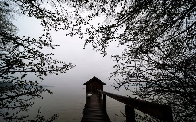 A boat house is framed by branches at Lake Ammersee in Stegen, Bavaria, Germany, 10 April 2019. (Photo by Lukas Barth-Tuttas/EPA/EFE)