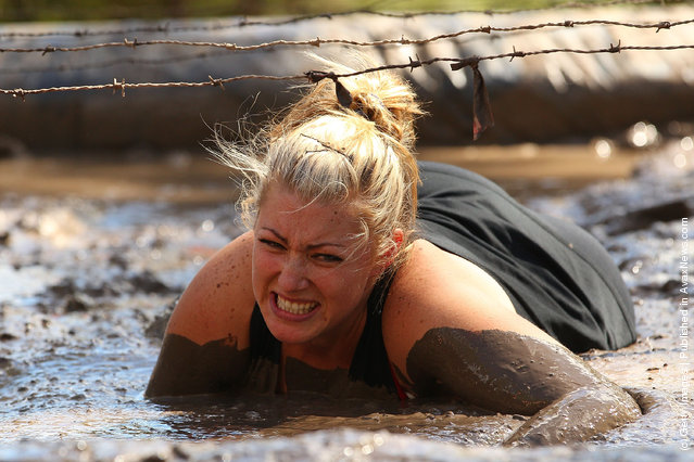 A competitor crawls through a mud pit under low slung barbed wire as she competes in The Tough Bloke Challenge