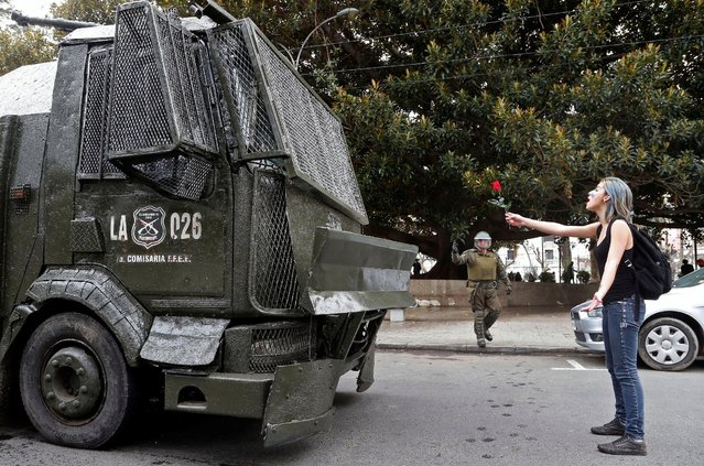 A demonstrator holds a rose in front of a riot police vehicle during an unauthorized march called by secondary students to protest against government education reforms in Valparaiso, Chile, May 26, 2016. (Photo by Rodrigo Garrido/Reuters)