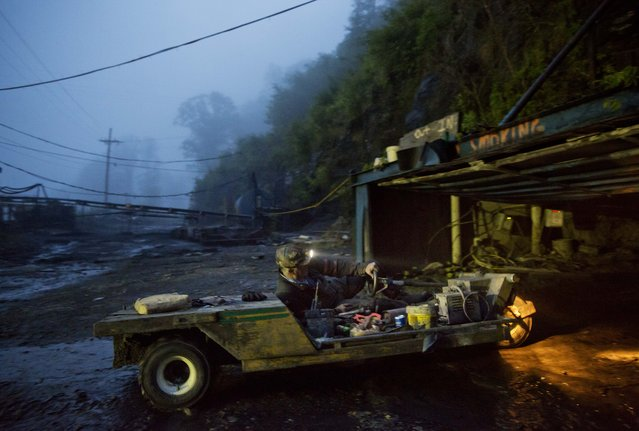 In this Thursday, May 12, 2016 photo, coal miner Scott Tiller drives a man trip into an underground mine less than 40-inches high at dusk in Welch, W.Va. For over a century, life in Central Appalachia has been largely defined by the ups and downs of the coal industry. There is a growing sense in these mountains that for a variety of reasons, economic, environmental, political, coal mining will not rebound this time. Coal's slump is largely the result of cheap natural gas, which now rivals coal as a fuel for generating electricity. Older coal-fired plants are being idled to meet clean-air standards. According to the Labor Department, there were 56,700 jobs in coal mining in March, down from 84,600 in March 2009, shortly after President Barack Obama entered office. There are stark differences between the two parties on energy and environment issues that underscore the sky-high stakes for both sides of the debate in the 2016 presidential race. Many environmental groups and Democrats fear a potential rollback of the Obama administration's policies on climate change and renewable energy under a Republican president. Republicans all support coal production and enthusiastically back nuclear energy. They along with business groups are eager to boost oil and gas production following years of frustration with Obama. (Photo by David Goldman/AP Photo)