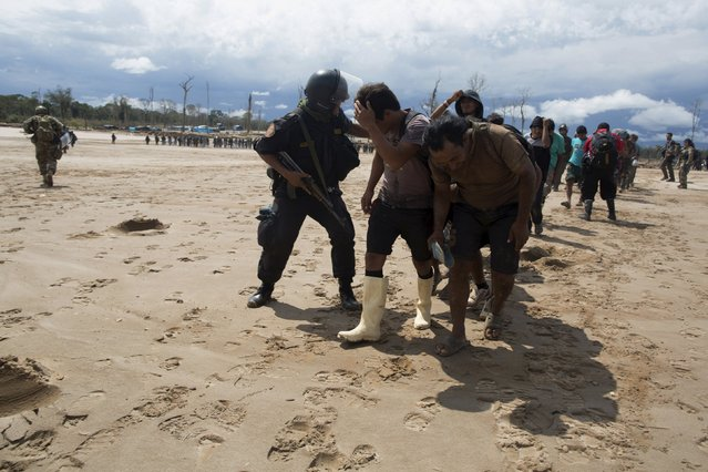 Police escort a group of miners detained during a police operation to destroy illegal gold mining camps in La Pampa, in the southern Amazon region of Madre de Dios, August 11, 2015. (Photo by Sebastian Castaneda/Reuters)