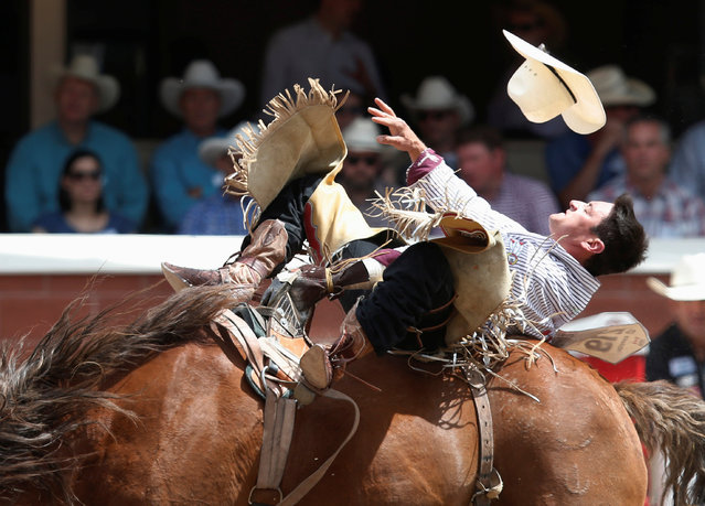 Ty Taypotat of Regina, Saskatchewan, rides the horse Double Dippin' in the bareback event during the Calgary Stampede rodeo in Calgary, Alberta, Canada July 8, 2016. (Photo by Todd Korol/Reuters)