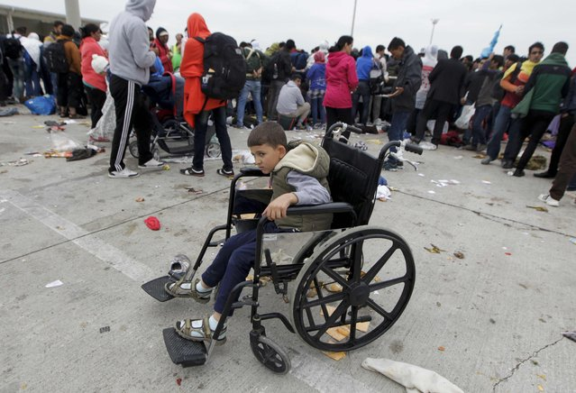 A boy sits in a wheelchair as migrants wait to cross the border with Austria near the town of Hegyeshalom, Hungary, September 5, 2015. (Photo by Srdjan Zivulovic/Reuters)