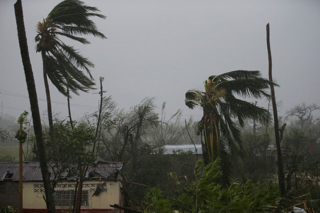 Trees damaged by wind are seen during Hurricane Matthew in Les Cayes, Haiti, October 4, 2016. (Photo by Andres Martinez Casares/Reuters)