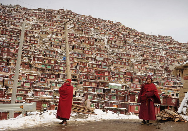 This photo taken on April 5, 2013 shows Buddhist monks walking in front of the thousands of small houses where they live at Seda Monastery, the largest Tibetan Buddhist school in the world, with up to 40,000 monks and nuns in residence for some parts of the year. Seda, known to Tibetans as Serthar is located in Ganzi prefecture in the west of China's Sichuan province and has become a hotbed of protests and violence since the Tibetan uprisings of March 2008. (Photo by Peter Parks/AFP Photo)