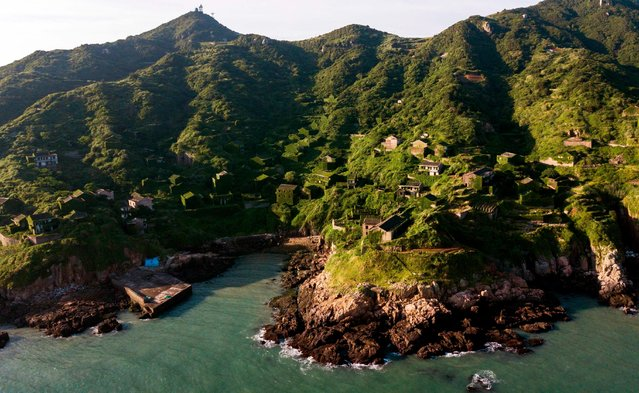 This picture taken on June 1, 2018 shows abandoned village houses covered with overgrown vegetation in Houtouwan on Shengshan island, China' s eastern Zhejiang province. (Photo by Johannes Eisele/AFP Photo)