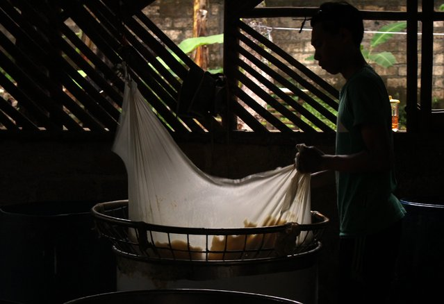 A worker filtrates hot boiled soybean porridge using a soft cloth in a traditional tofu factory in Depok, Indonesia, 21 January 2015. Tofu has been a common side dish for many Indonesian families. It is healthy, inexpensive and easy to find throughout the city. (Photo by Adi Weda/EPA)