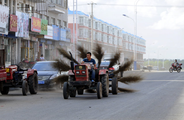 A man drives an improvised tractor with 12 brooms tied in the rear, as he tries to clean a road in Mohe, Heilongjiang province, August 31, 2013. (Photo by Reuters/Stringer)