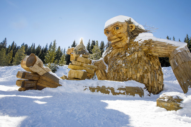 "The large wooden troll, ""Isak Hearthstone"", made by artist Thomas Dambo during Breckenridge International Festival of the Arts in August, sits in the snow Wednesday, November 14, 2018, along the Wellington Trail in Breckenridge, Colo. (Photo by Hugh Carey/Summit Daily News via AP Photo)"